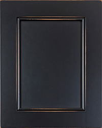 Black Specialty Panel Door PA